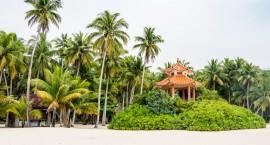海南最美的小镇,到处都是椰子树,国内的椰子近四分之一来自这里