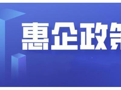 三亚上线省内首个市级惠企政策平台